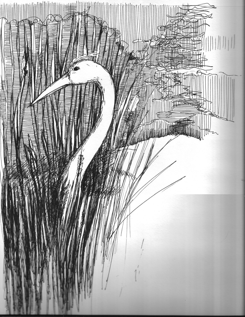 Crane - original pen and ink drawing