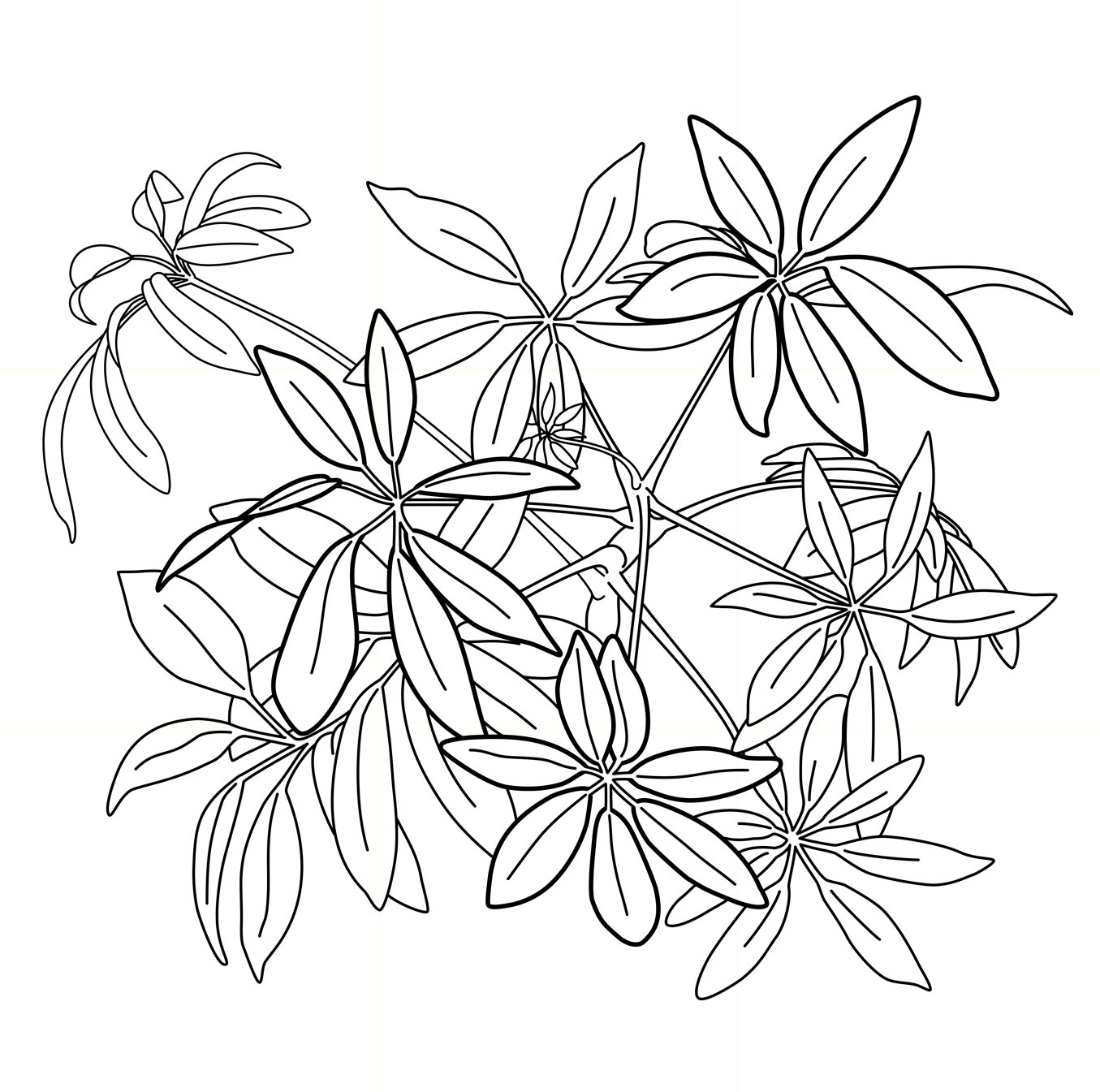 Fireworks - Vector drawing formatted for engraving