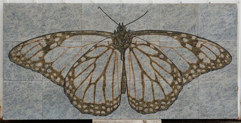 Engraved granite - Monarch Butterfly